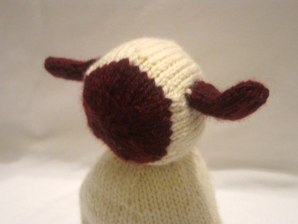 Lamb's Face