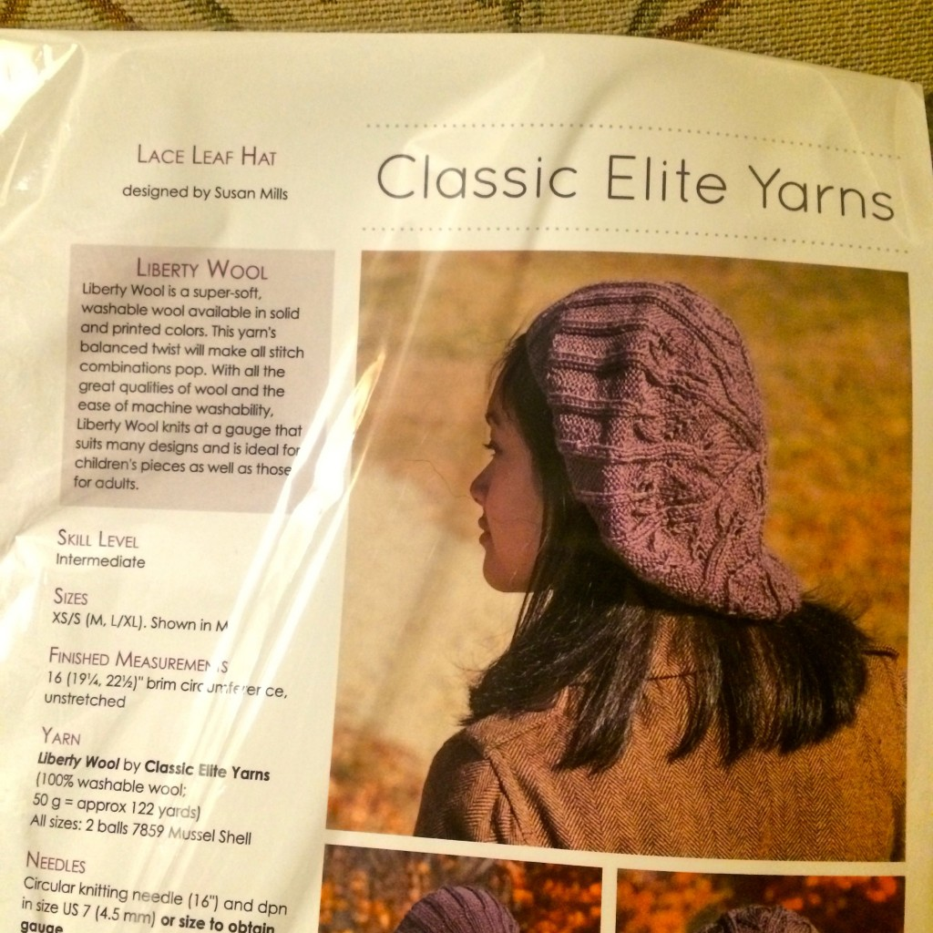 Raffle Prize: Hat Pattern And Yarn