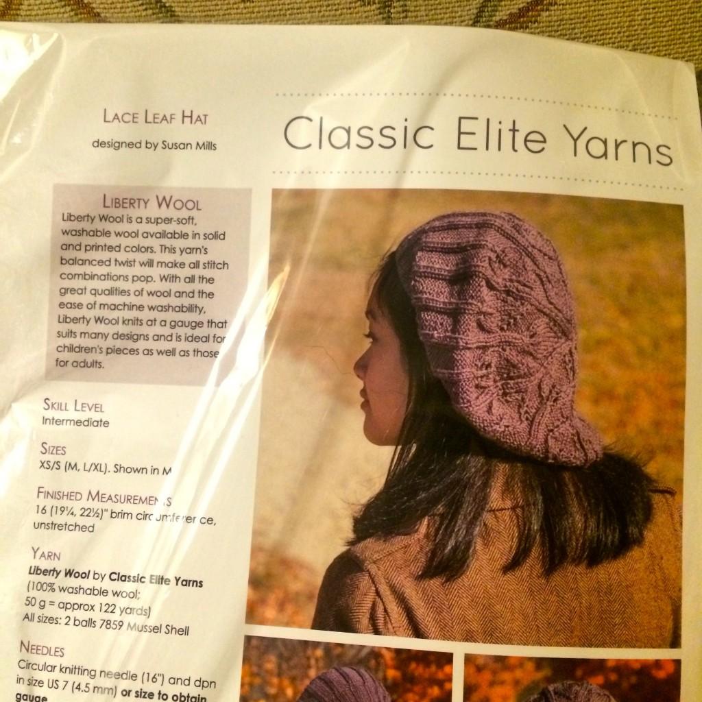 Raffle Prize: Hat Pattern And Yarn